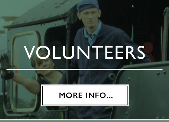 volunteering page button